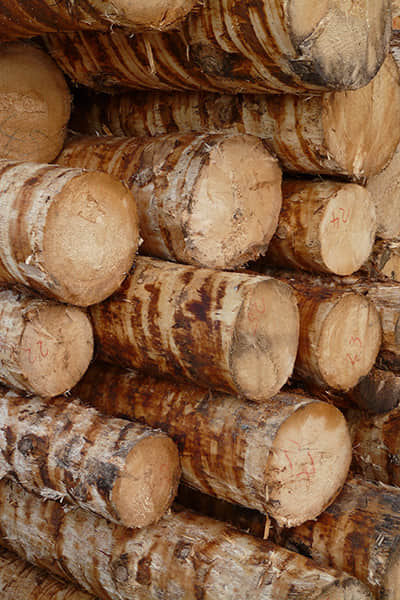原木烘干方案